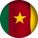Наклейка Флаг Камерун